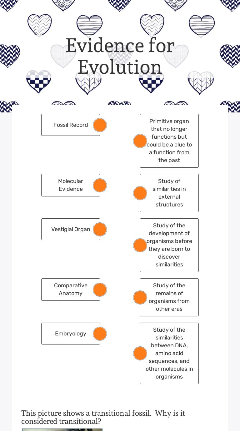 Evidence for Evolution  Interactive Worksheet by Vidhya Within Evidence Of Evolution Worksheet