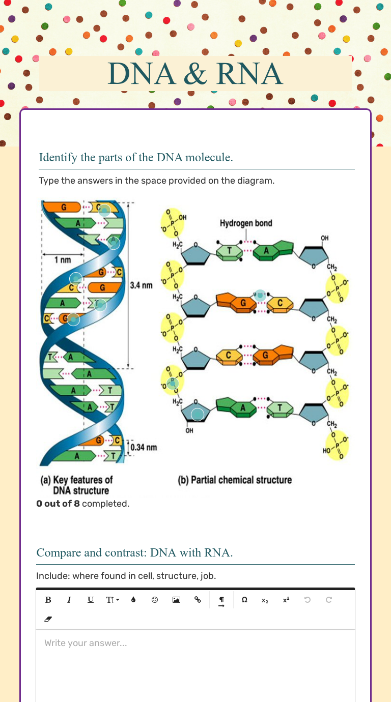 DNA & RNA  Interactive Worksheet by Tracey Muise  Wizer.me Regarding Dna And Rna Worksheet Answers
