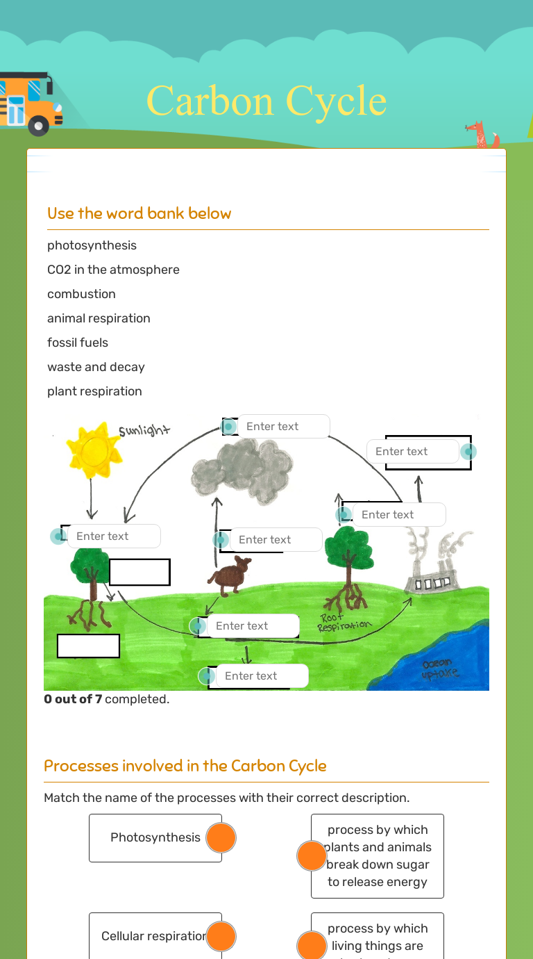Worksheet on the carbon cycle